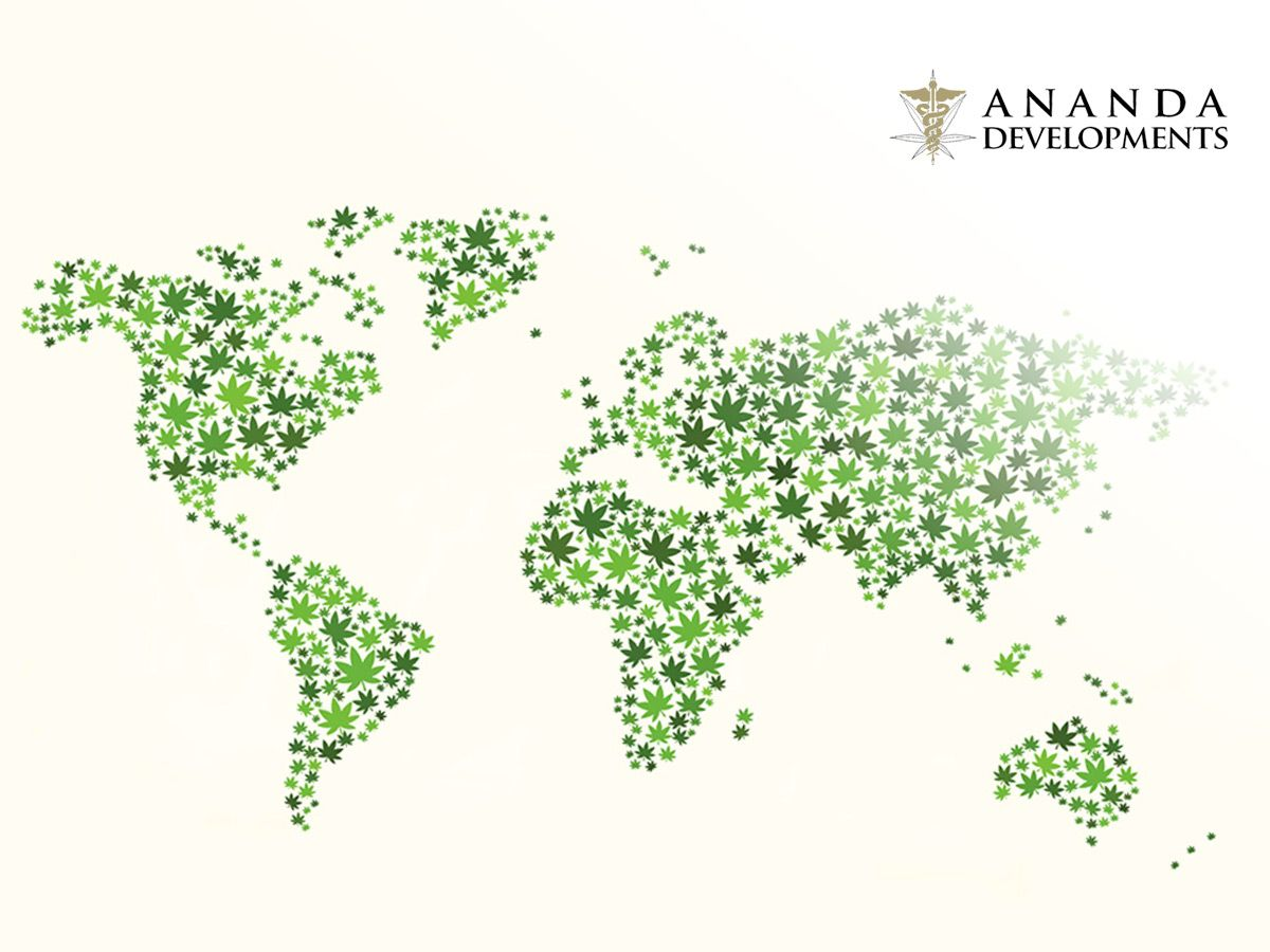Can medical marijuana deliver potent returns? An interview with Ananda Developments (ANA)
