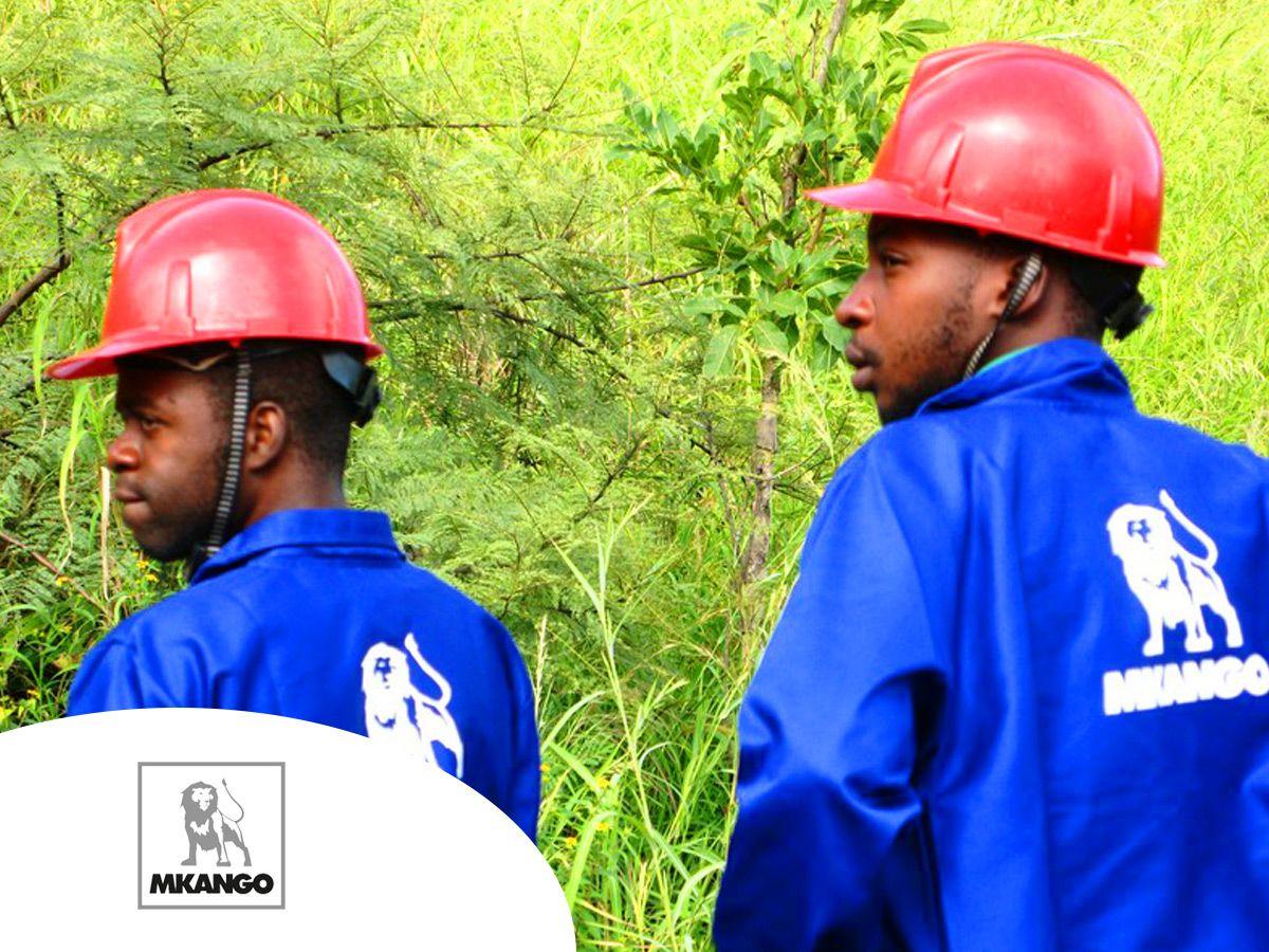 Rare earths player Mkango Resources bounces on Malawi drill success (MKA)