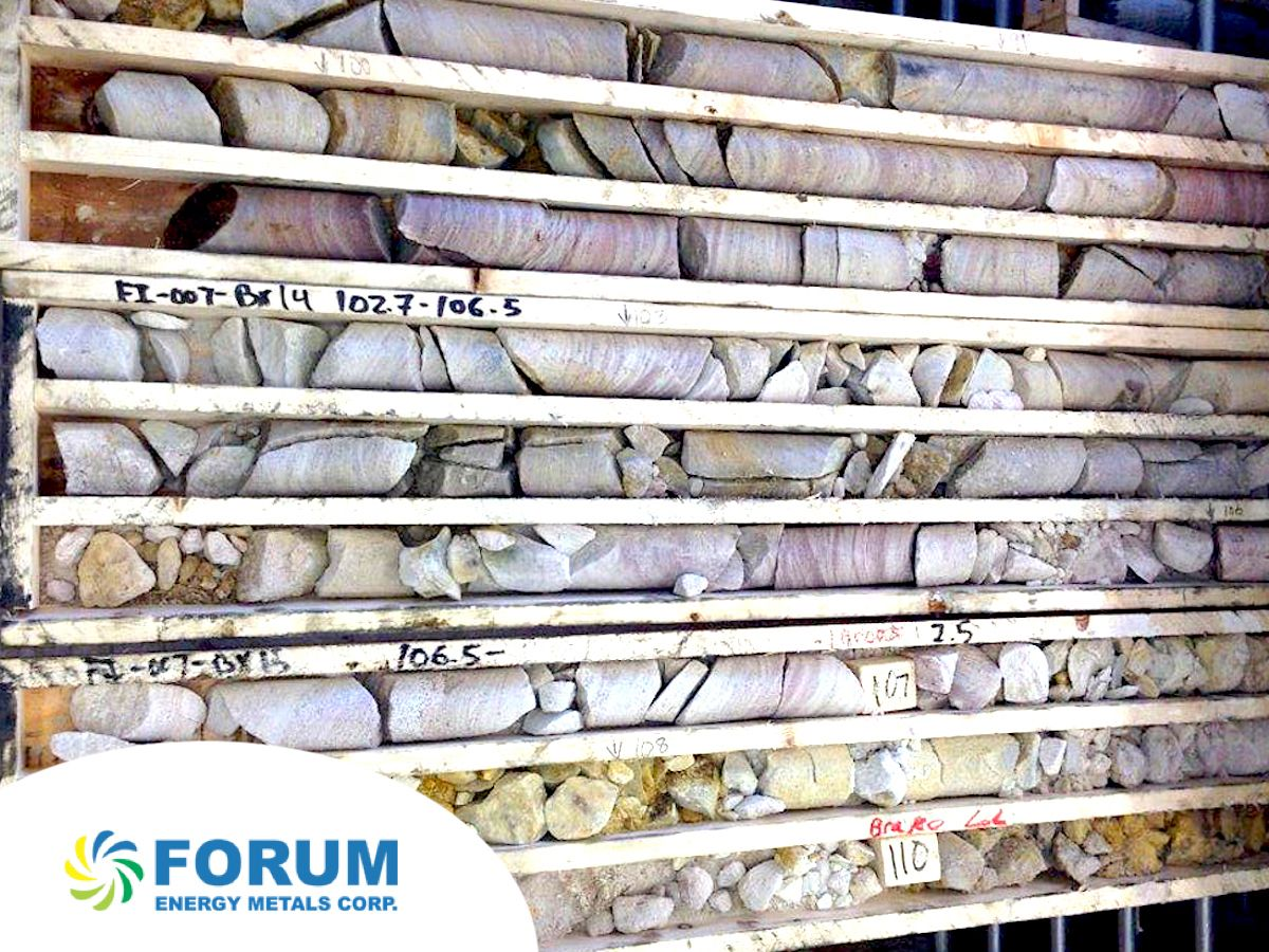 Forum Energy Metals adds leading geoscientist Dr Larry Hulbert to its board (FMC)