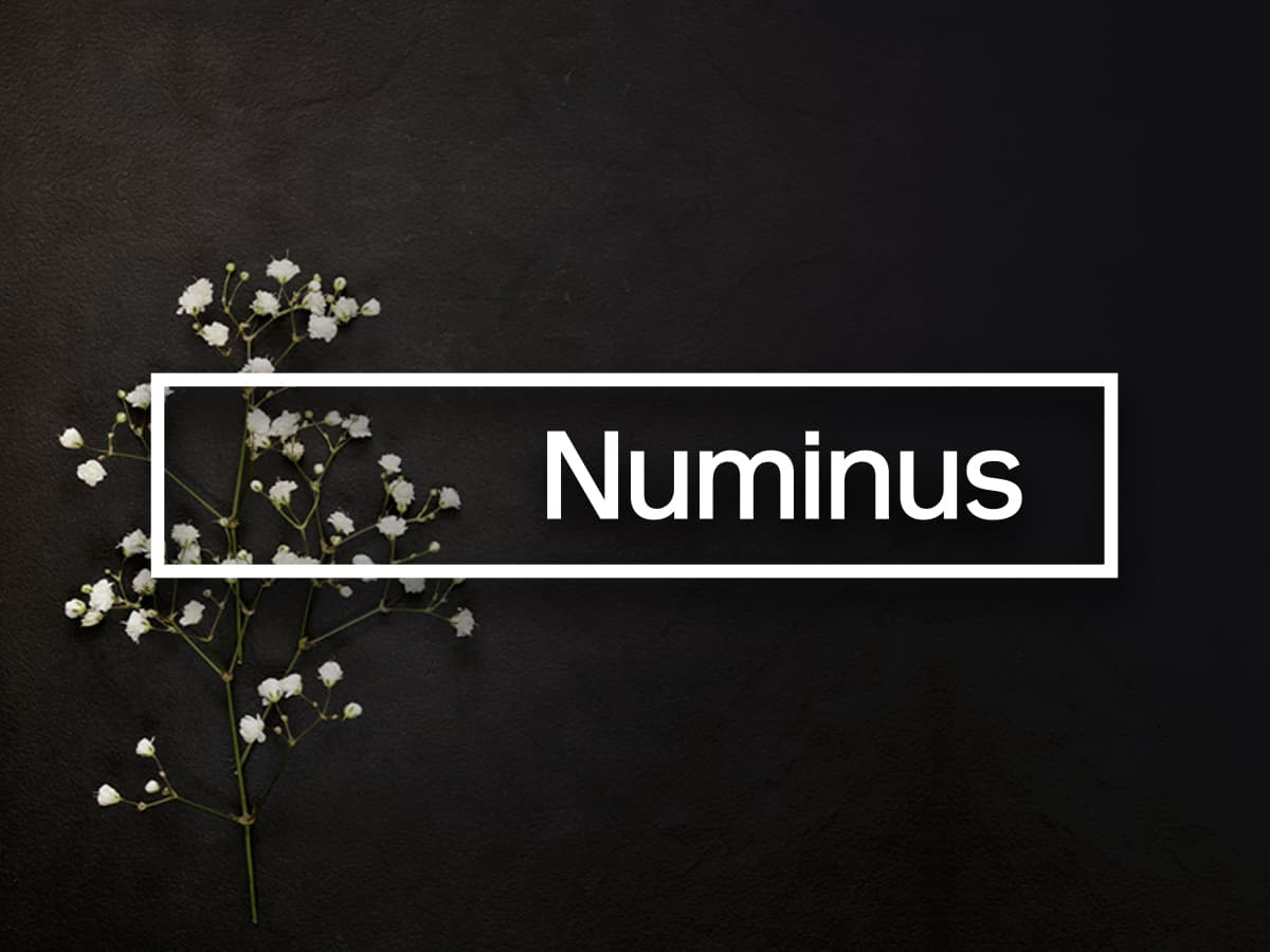 BREAKING NEWS: Numinus Announces Closing of Oversubscribed $4.6 Million Offering