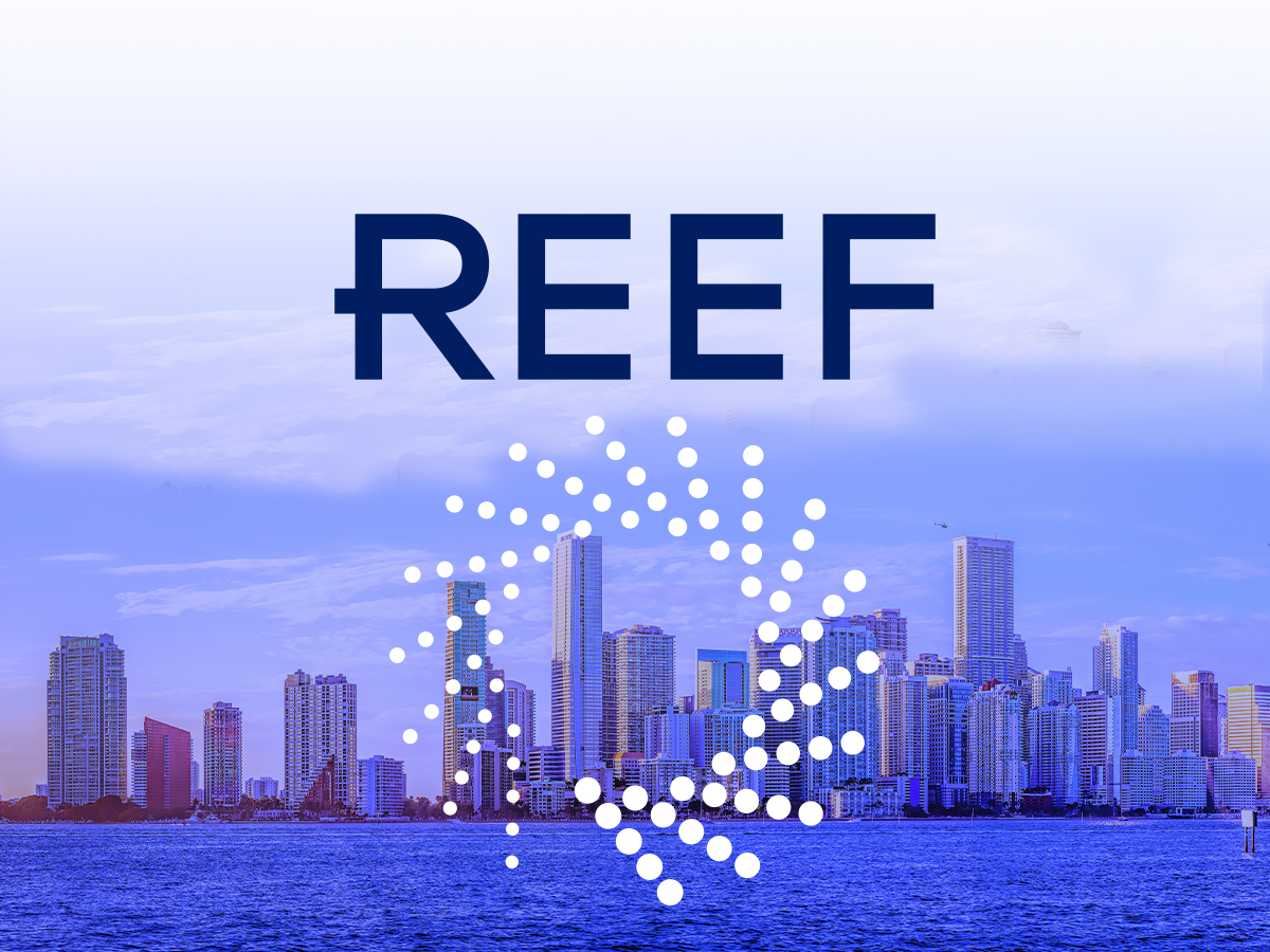 REEF Technology: From Parking Lot Automation to Urban Saviour