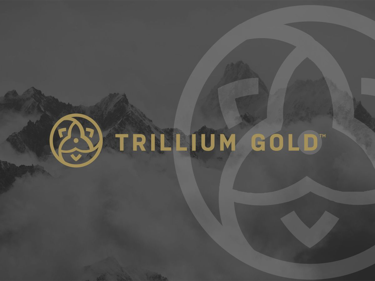 Trillium Gold Mines: Share price movement as new acquisition extends its reach!