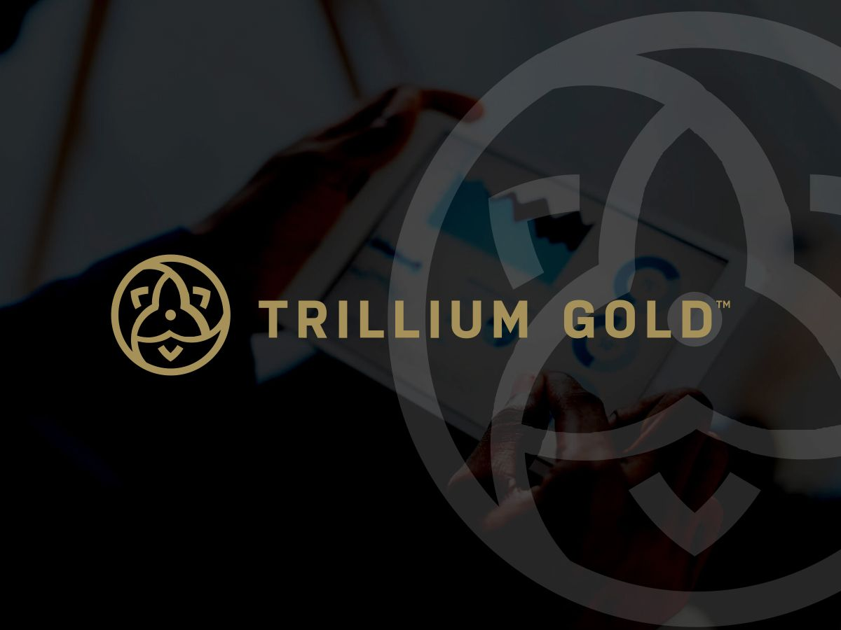 Trillium Gold Mines Extends Acquisition at Newman Todd