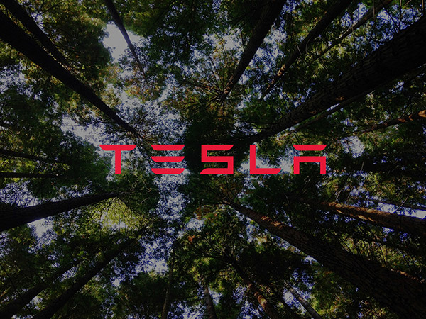 Tesla logo with trees in background