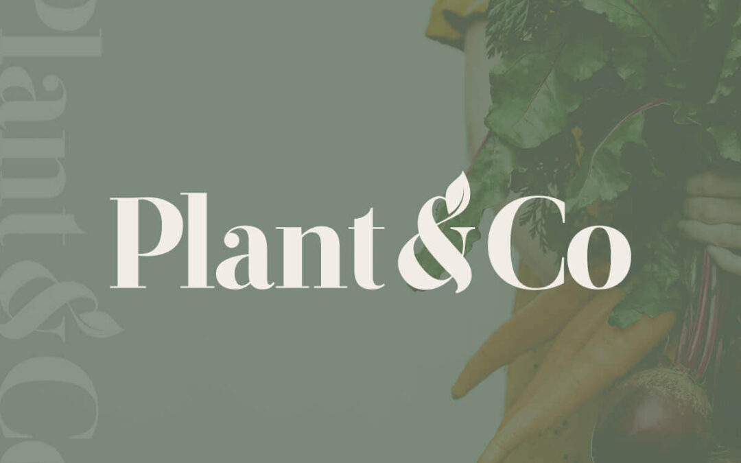 Plant&Co's YamChops Posts a 689% Increase in Online Plant-Based Food Products Sales