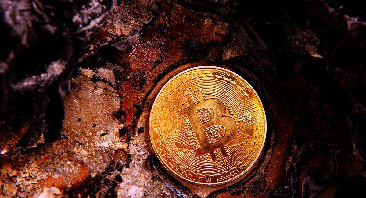 Elon Musk's favourite NFT crypto artist Pak gets Sothebys seal of approval