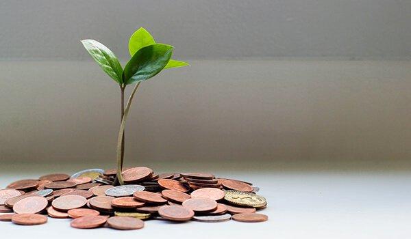 Hydrogen money tree