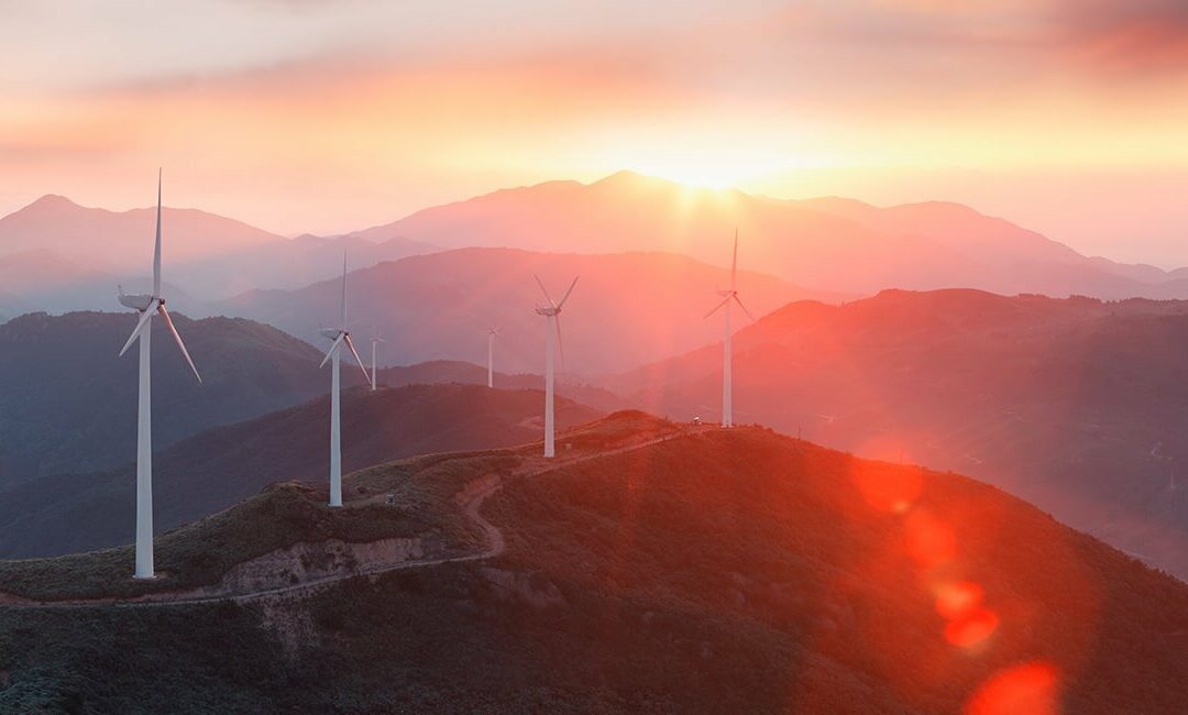 Top Five Renewable Energy Investment Trusts