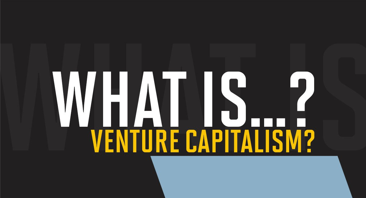 What is a venture capitalist?