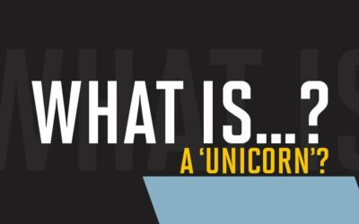 What is a 'unicorn'?
